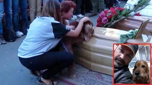 이탈리아 지진으로 사망한 주인 곁을 떠나지 않는 개