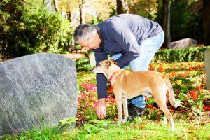 반려동물의 죽음을 애도하는 방법