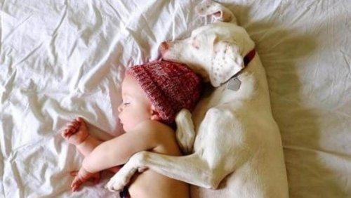 아기 덕분에 학대받은 과거를 극복한 개