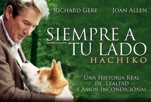 개에 관한 잊을 수 없는 10가지 영화