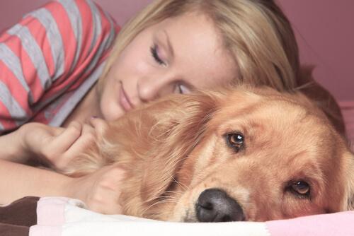 반려동물과 함께 자는 것의 장점과 단점