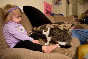 한쪽 팔이 없는 소녀가 다리가 세 개인 고양이를 입양하다