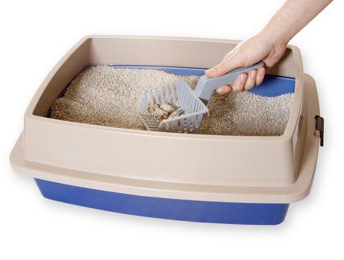 고양이의 모래 화장실 냄새를 없애는 방법