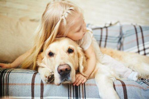 불안한 개를 진정시키는 법