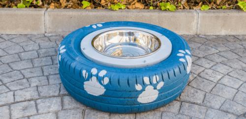 환경 보호까지 생각하는 반려견용 DIY 물그릇