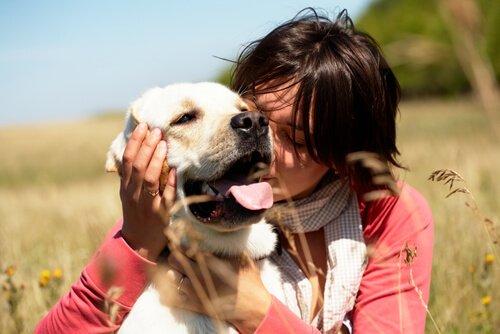 개는 포옹을 싫어한다는 사실을 알고 있는가?