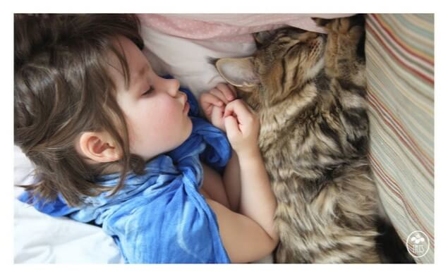 자폐증 소녀와 고양이의 감동적인 우정