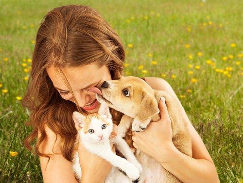 반려동물을 기르면 정신 건강에 좋은 5가지 이유
