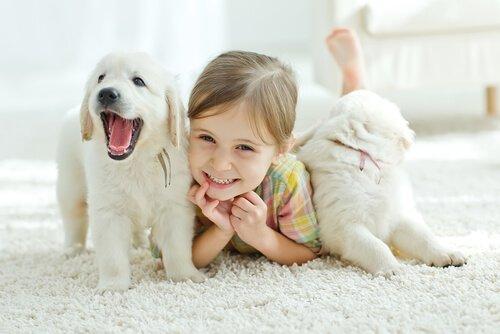 반려동물이 아기를 더 건강하게 만든다