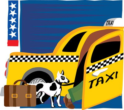 스페인에서 추가 비용 없이 반려견 동반이 가능한 택시