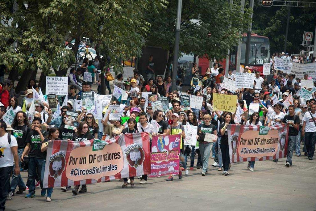 동물 권리 보호를 위한 행진