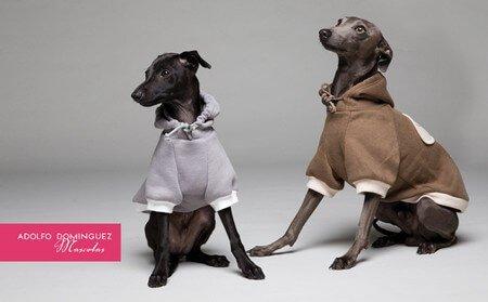 아돌포 도밍게즈의 개 의류 컬렉션
