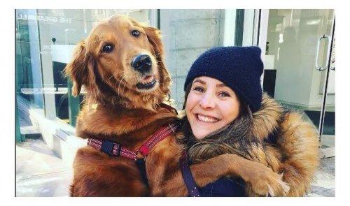 프리허그를 하는 개, 루비의 이야기