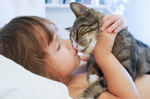 고양이와 자면 좋은 점 5가지