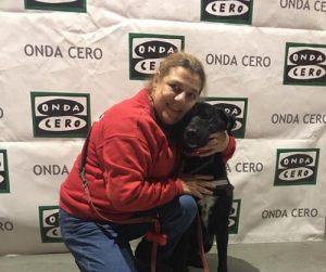 개를 이용한 사람의 심리적 신체적 치료