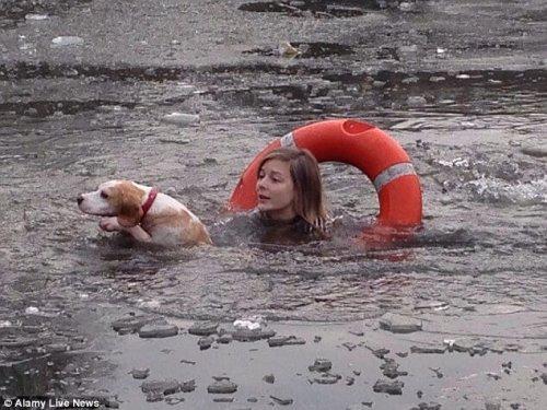 개를 구하려고 꽁꽁 언 호수에 뛰어든 여자