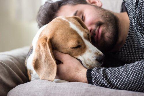 인간의 가장 좋은 친구는 개