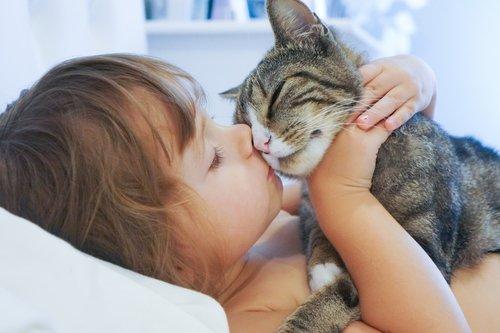 고양이가 한 사람의 인생을 영원히 바꾸는 순간