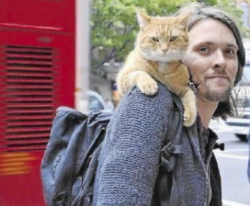 내 어깨 위 고양이 밥