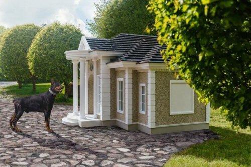 개들을 위한 개 저택이 있다