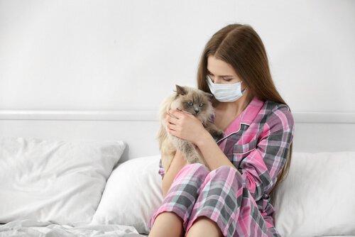 고양이 알레르기를 치료하는 방법