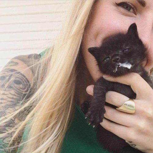 키튼 레이디: 수백 마리 고양이를 살리는 여자