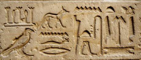 고대 문명에서 개의 역할