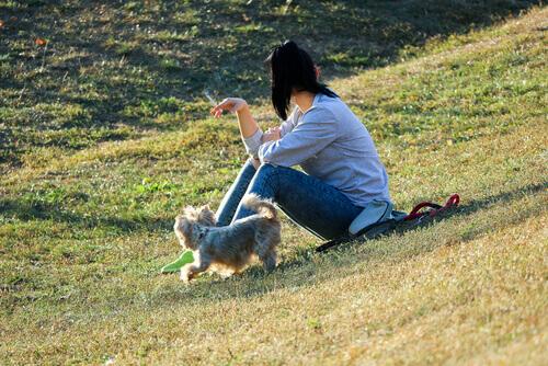 흡연이 반려동물에게 끼치는 영향은?