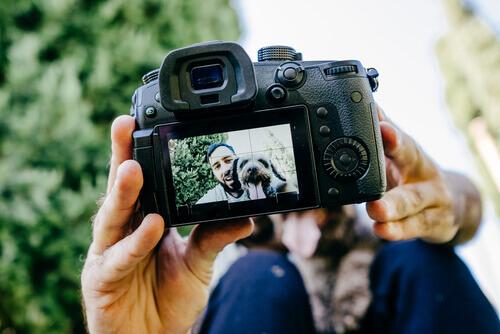 반려동물의 멋진 사진을 찍기 위한 4가지 방법