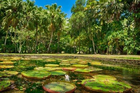 세계에서 가장 아름다운 7대 자연경관