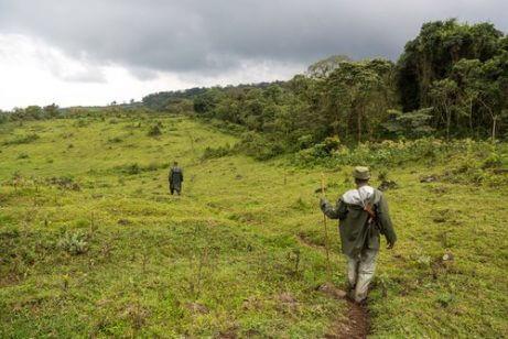 자연보호 운동가