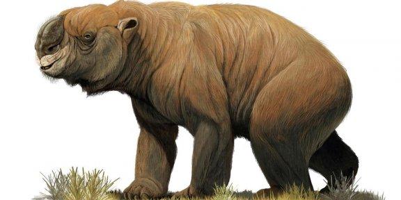호주의 멸종된 거대 동물