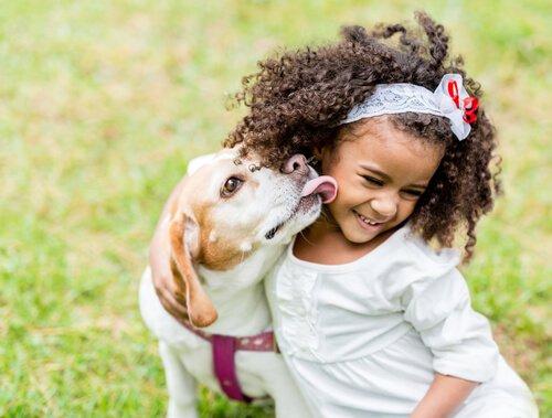 아이와 반려견의 올바른 관계를 위한 지침