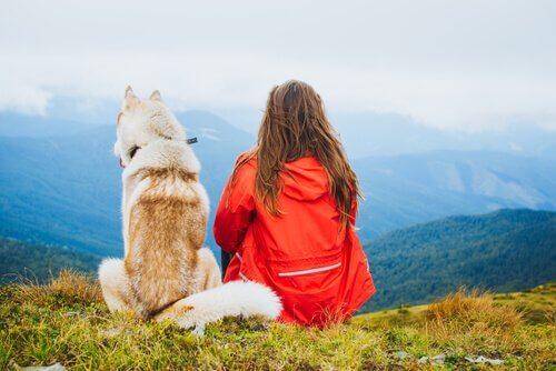반려동물은 우리를 더 행복하게 만든다