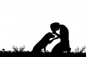 개도 인간처럼 울 수 있을까? 송곳니 음성 래퍼토리