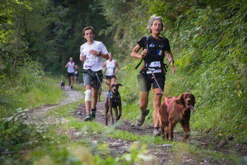반려견과 함께 달리는 것이 유익한 이유