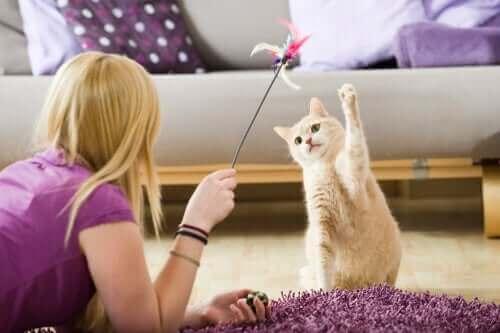 자가 격리 기간 중 반려동물과 놀아주기