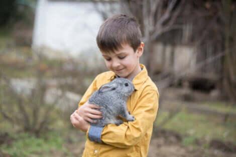 토끼 치유법은3