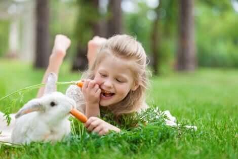 토끼 치유법은2