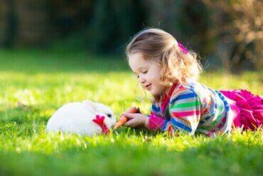 토끼는 심리 치료에 어떤 도움을 줄까