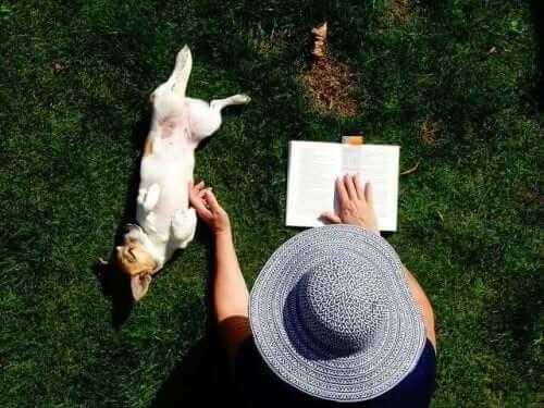 콘라트 로렌츠의 저서 '인간, 개를 만나다'
