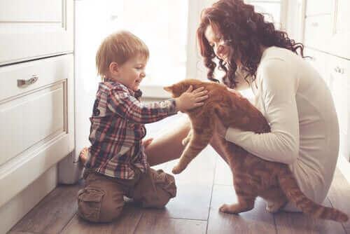 반려동물이 인간의 삶에 미치는 영향