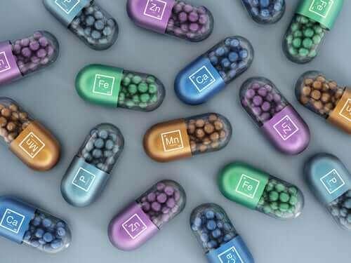 반려견 먹이에 함유된 합성 비타민과 무기질