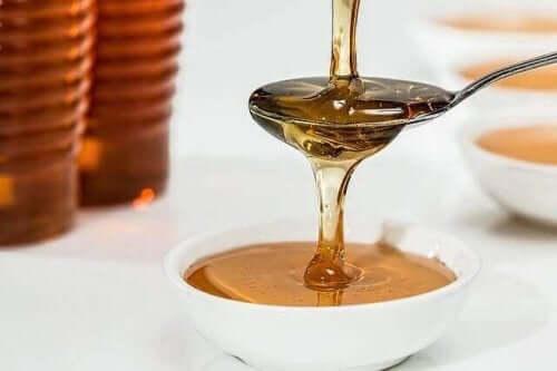 꿀벌 제품이 반려견 건강에 주는 이점